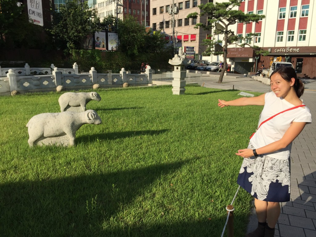 Sheep in the middle of the city!