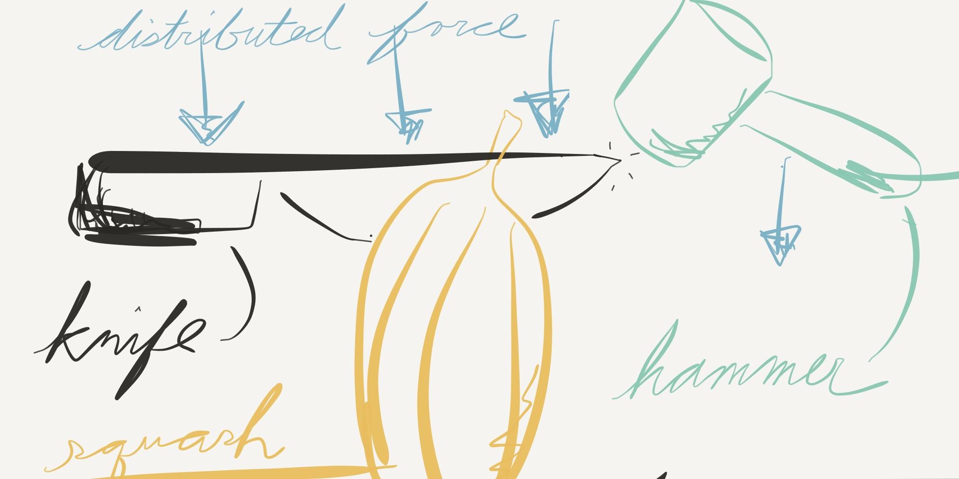 Doodled diagram of how to cut squash, Yiling Wong Nov 21, 2016